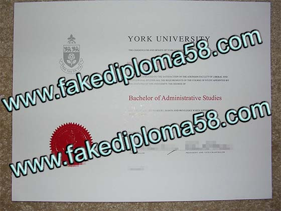 York university diploma sample, buy fake degree