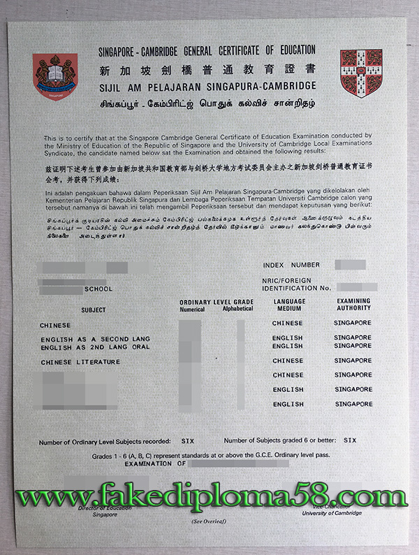 Singapore GCE O Level  certificate, Cambridge GCE Ordinary Level certificate