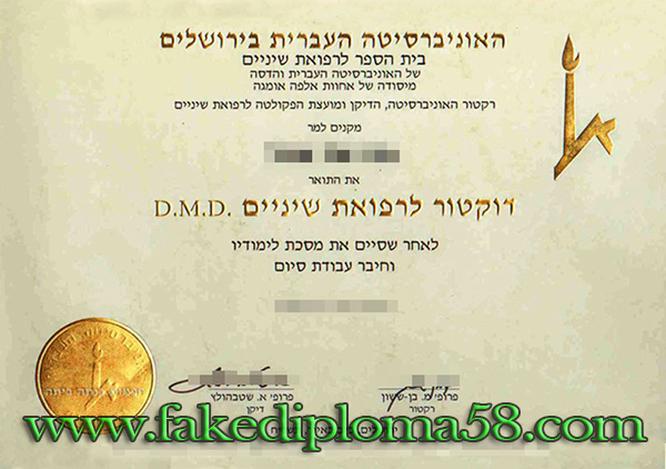 The Hebrew University of Jerusalem bachelor degree sample