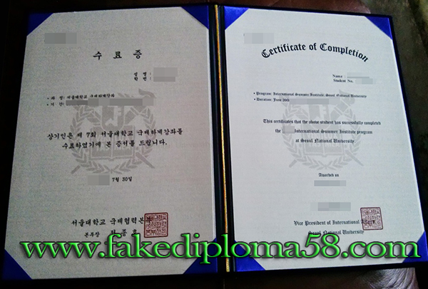 Seoul National University degree certificate from Korea