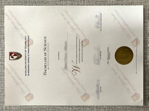 Auckland University pf Technology fake diploma