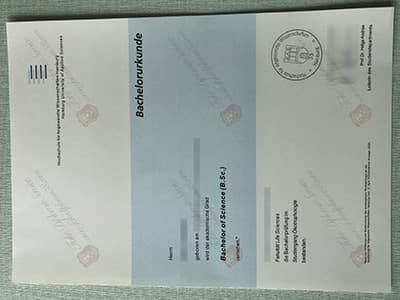 Buy HAW Diploma Online, Same as the Original One