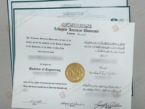 Lebanese American University diploma