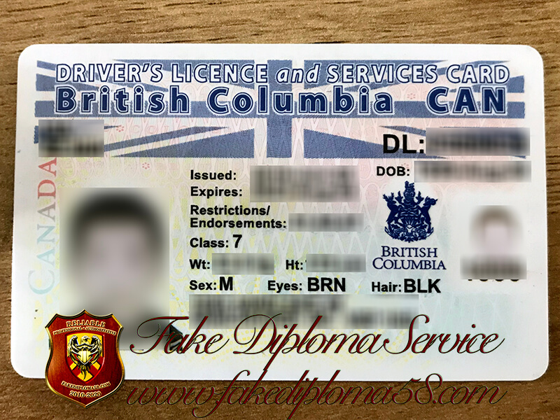 Get British Columbia Driver's Licence