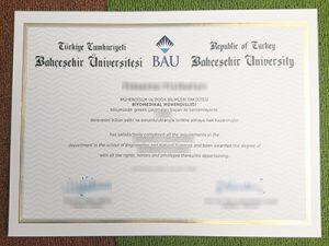 Bahcesehir University degree