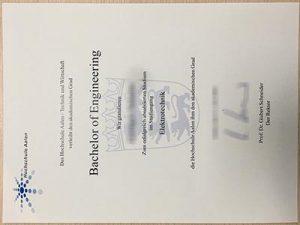 Aalen University degree