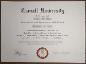 Cornell University degree