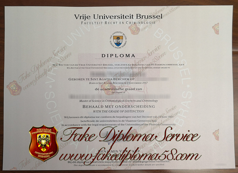 Free University of Brussels diploma