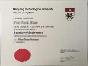 Nanyang Technologicial University degree