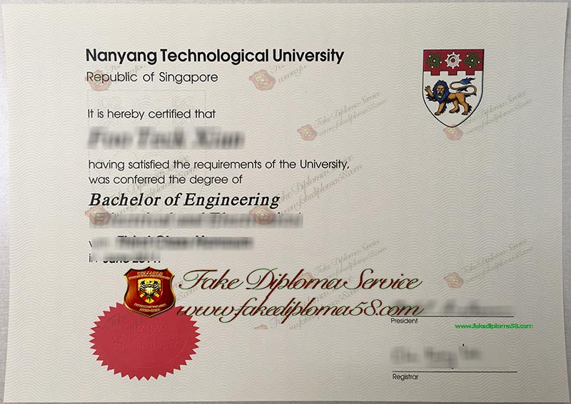 Nanyang Technologicial University diploma