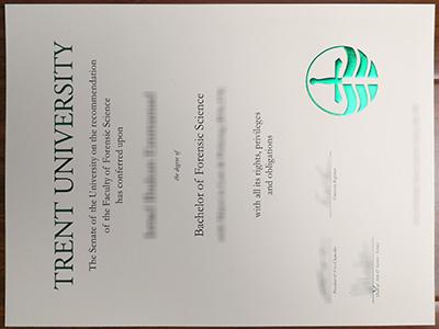Trent University degree