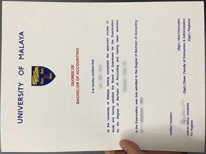 University of Malaya degree