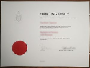 University of York degree