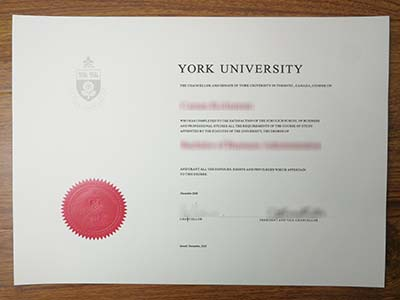 Where can i get a fake York University degree on time