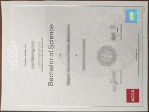 Oxford Brookes University degree