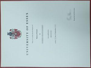 University of Essex degree