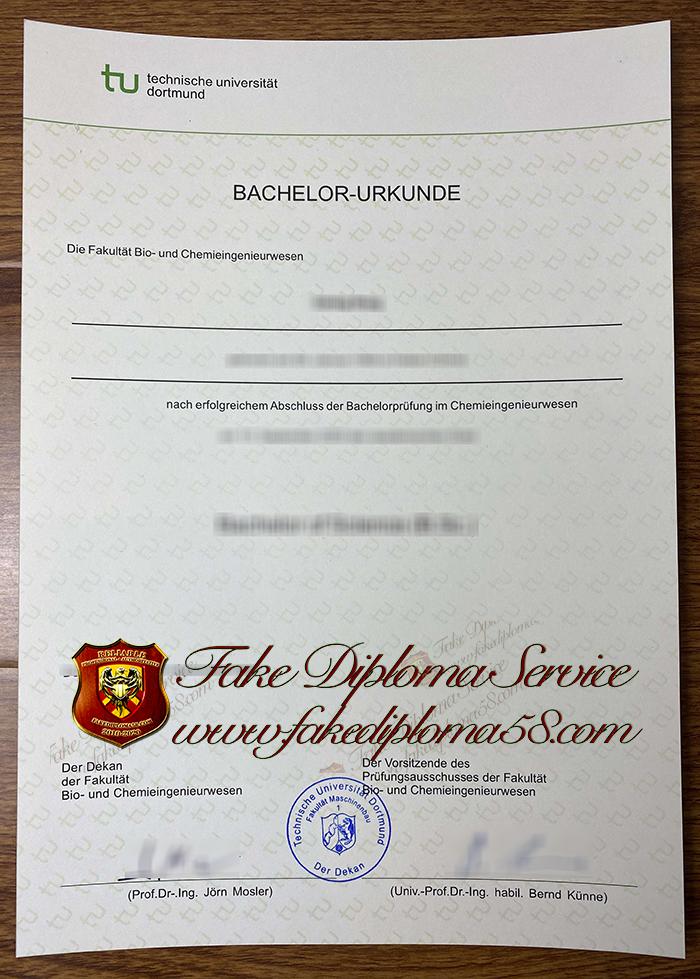 Dortmund University of Technology diploma