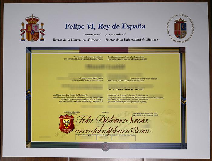Universidad de Alicante diploma