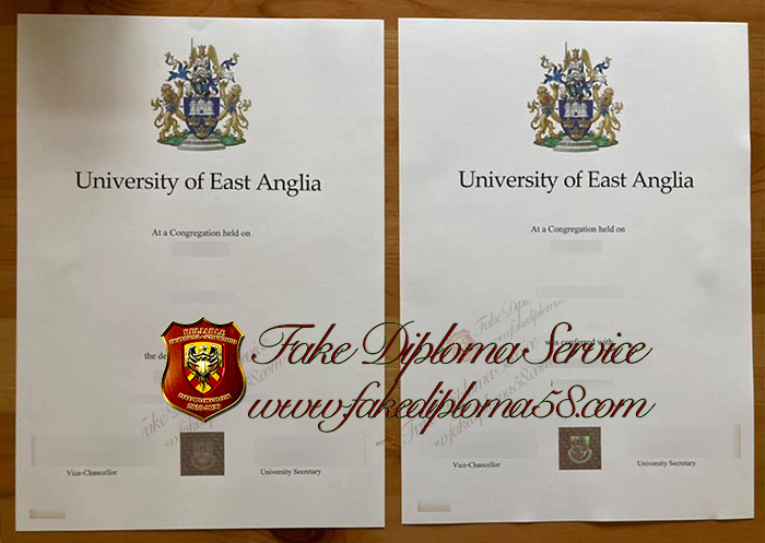 University of East Anglia diploma