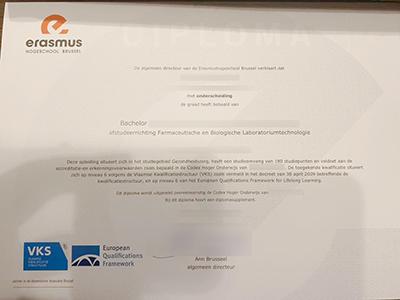 Can i order a fake Erasmushogeschool Brussel diploma for a job?